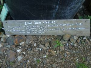 love your weeds